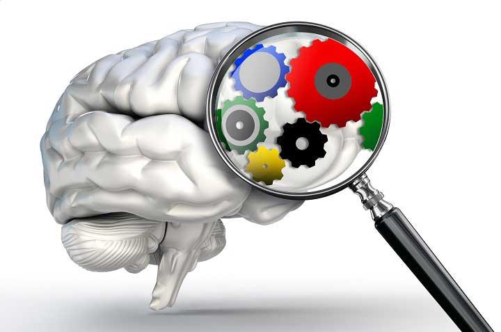sesgos-cognitivos1.jpg